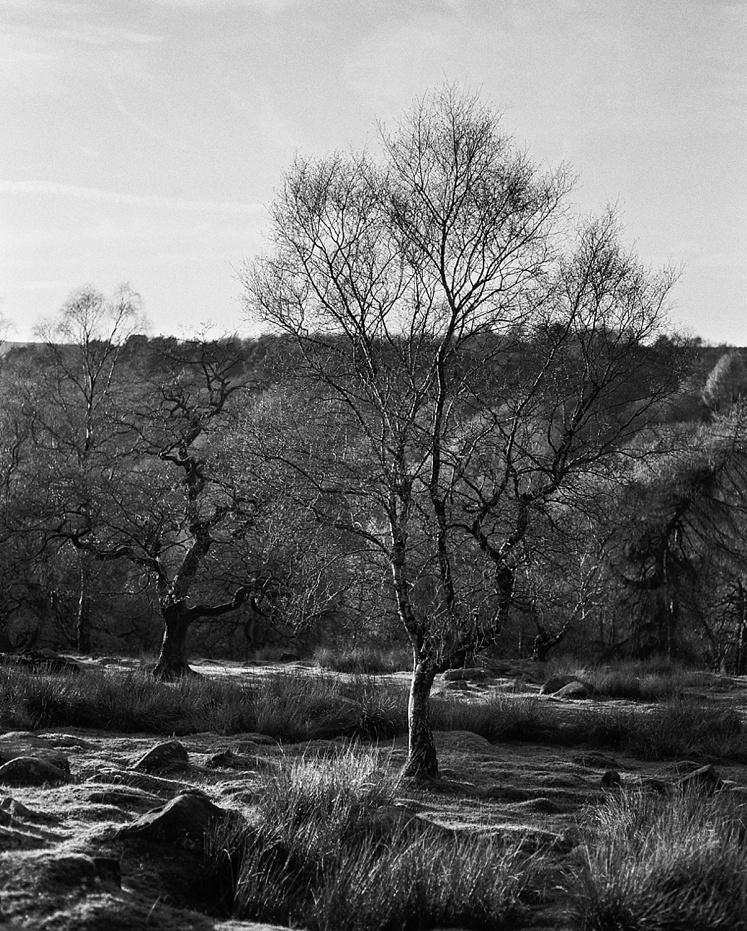 Longshaw estate Derbyshire Peak District_0002