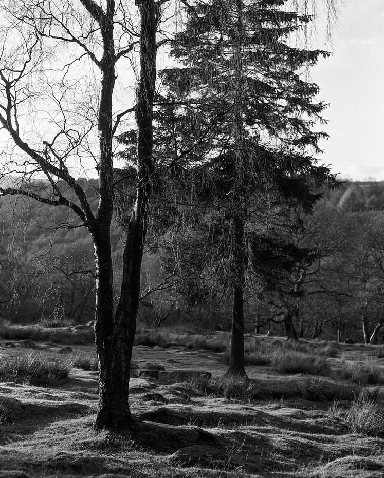 Longshaw estate Derbyshire Peak District_0003